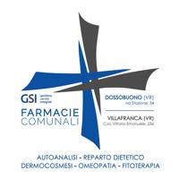 GSI - partners PSG Villafranca